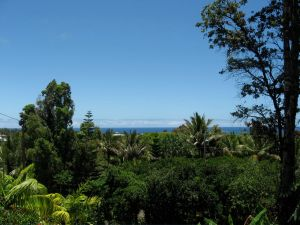 Pacific Ocean view SE Hawai'i's Big Island