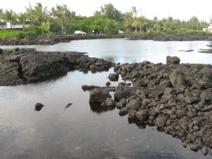 Evening photo of the tide pools at Kapoho
